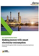 Making money with smart electricity consumption