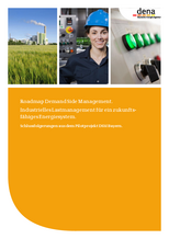 Studie: Roadmap Demand Side Management.