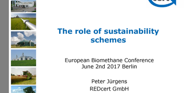 Workshop I: The role of sustainability schemes